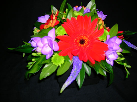 red gerbera with purple and green accents